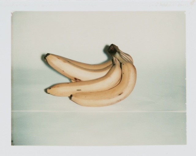 Andy Warhol, 'Andy Warhol, Polaroid of Bananas', Hedges Projects