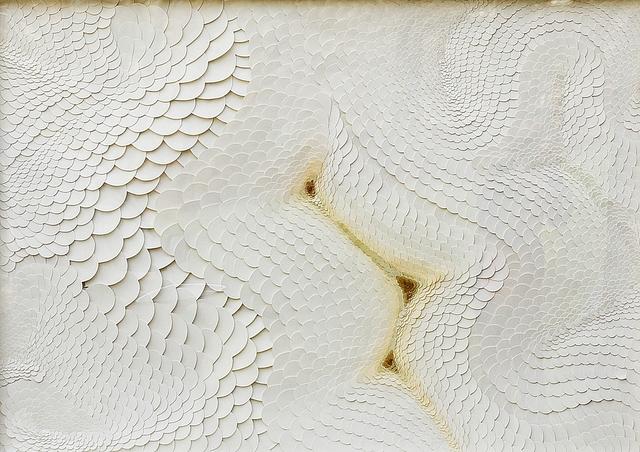 , 'Trashumancias 12,' 2007, Honos Art