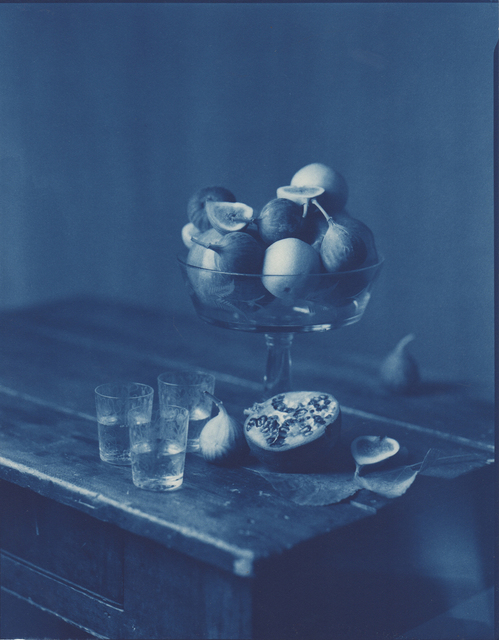 John Dugdale, 'Figs and Pomegranates', 1997, Photography, Cyanotype Photograph, Holden Luntz Gallery