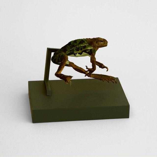 , 'Untitled,' , EL GRAN VIDRIO