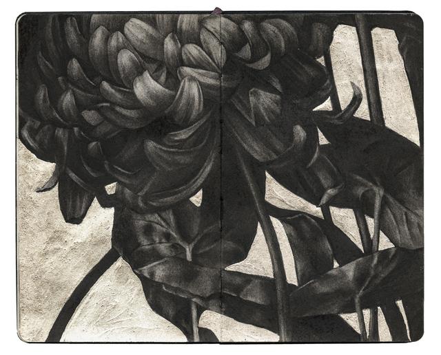 , 'Chrysanthemum VI,' 2017, Spoke Art