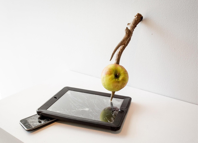 , 'Wounded Apples,' 2015, Diana Lowenstein Gallery