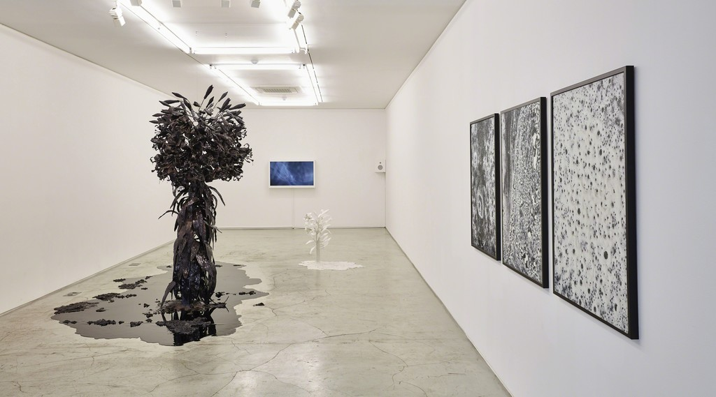 """wellknown unknown"" installation view, K1