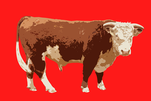 , 'Cow,' , Winfield Gallery
