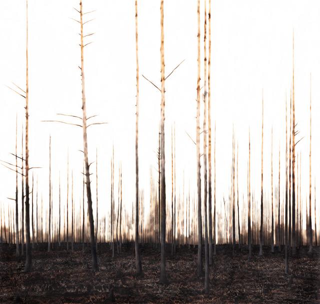 , 'Nejd,' 2019, Wetterling Gallery