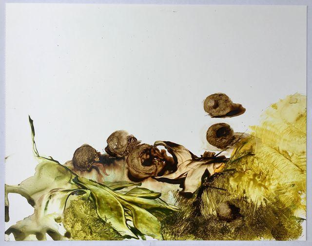 Ilana Manolson, 'Ghal', 2016, Jason McCoy Gallery