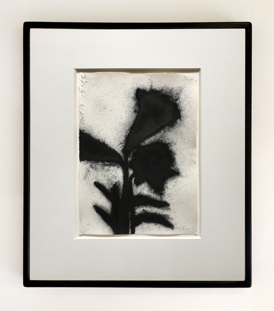 , 'Black Lillies, Oct 13 1989,' 1989, Joseph K. Levene Fine Art, Ltd.