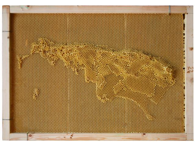 , 'Yuansu Series I #24 Argentina,' 2010-2011, Pearl Lam Galleries