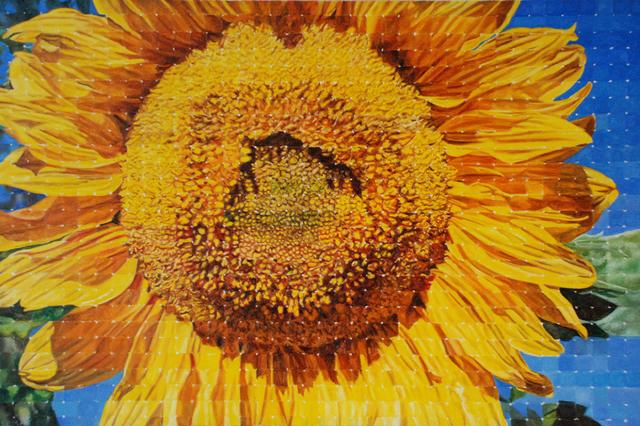 , 'Sunflower,' , Wallace Galleries