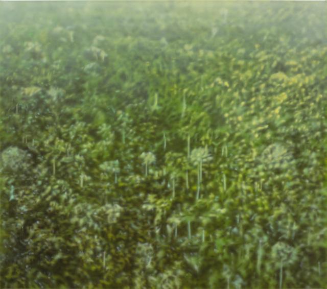 , 'Fordlandia X,' 6, i8 Gallery