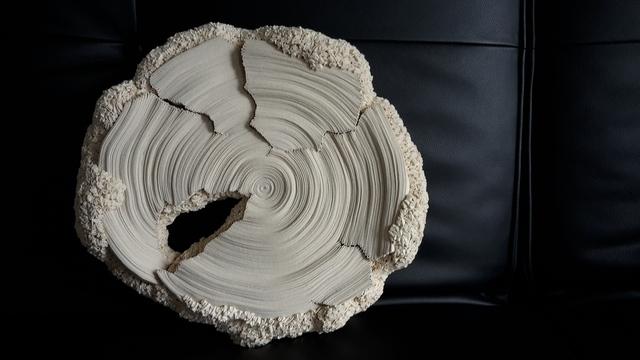 , 'Eclipse XI,' , Galerie Gosserez