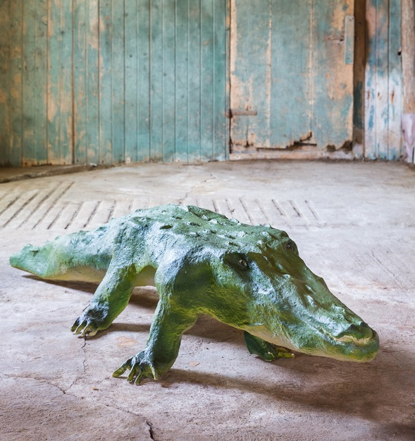 , 'Alligator,' 2015, Johannes Vogt Gallery