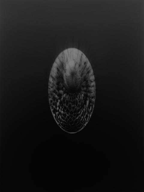 Gerda Schütte, 'Souvenir d'Afrique-2017 N° B3', 2017, Semjon Contemporary