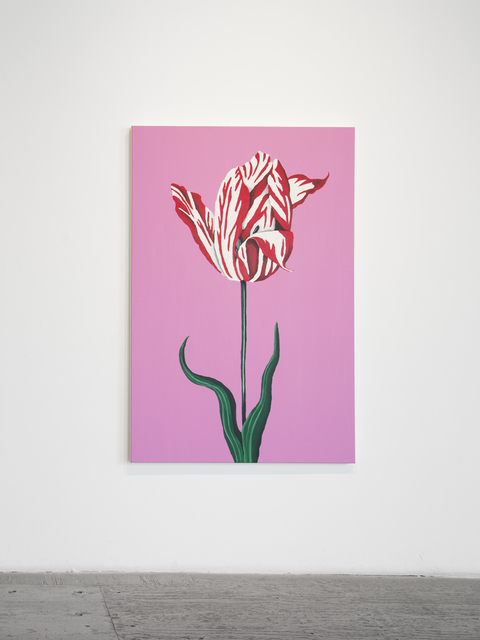 , 'Red and White Tulip,' 2016, Gallery 16