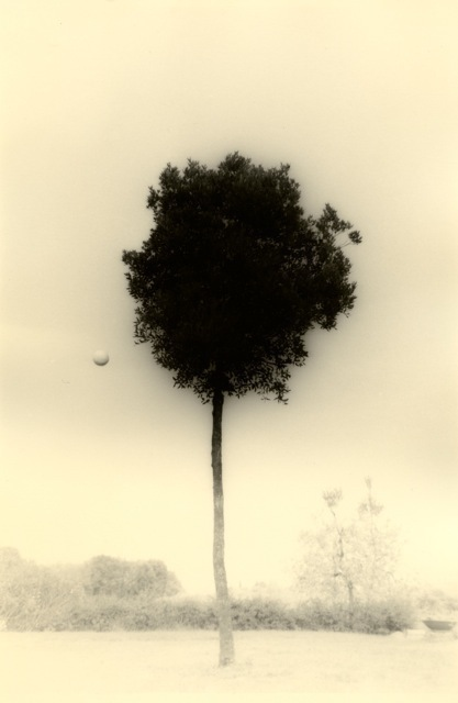 Yamamoto Masao, 'Untitled #1612(from Kawa=Flow)', 2012, Yancey Richardson Gallery