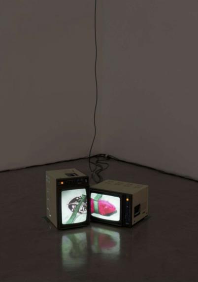 Daniele Puppi, 'Blast- Minimal devices of multi-sensory reanimation', 2013, Magazzino