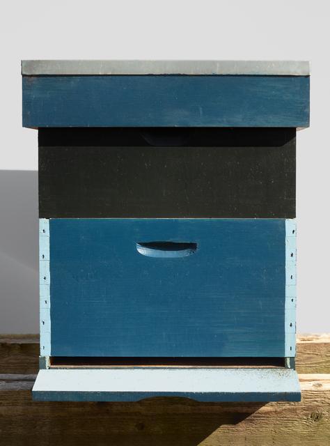 , 'Beehives (Blue & Black),' 2017, The Ravestijn Gallery