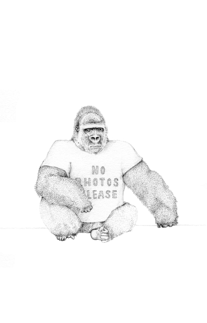 , 'No Photos Please,' 2014, Rebecca Hossack Art Gallery