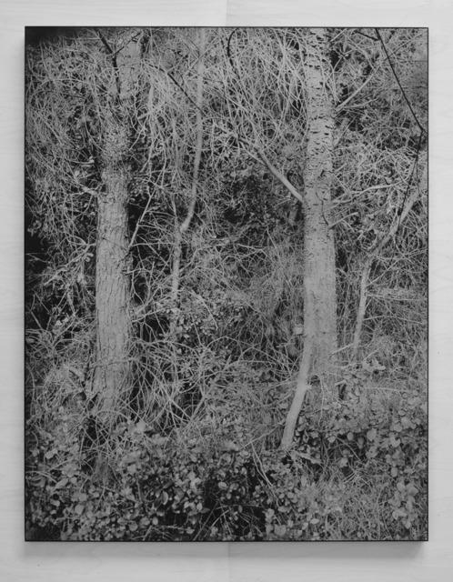 , 'La Grotte Roland,' , Galerie Laurent Godin