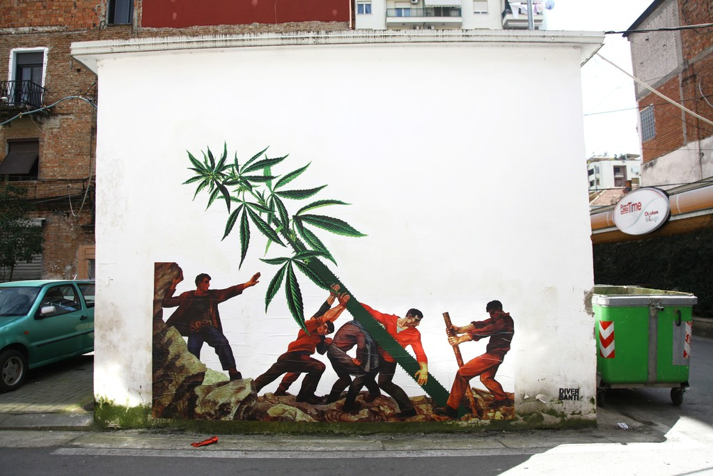 Ergin Zaloshnja, Weed Nation, c-print on wall, variable dimensions, 2018, courtesy the artist