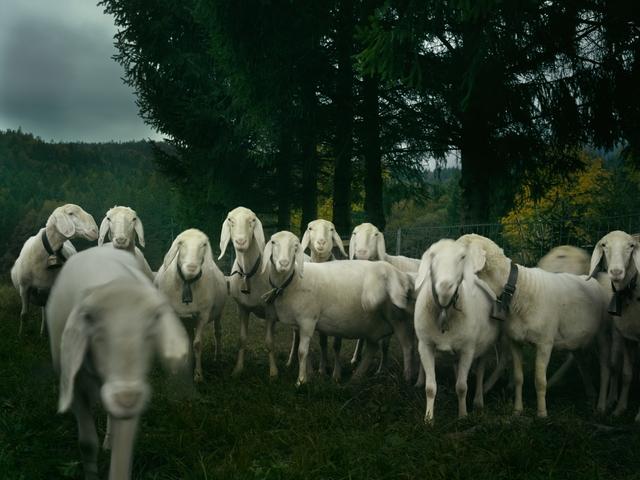 , 'Attack of the Clones, Garmisch, Germany,' 2016, Burnet Fine Art & Advisory