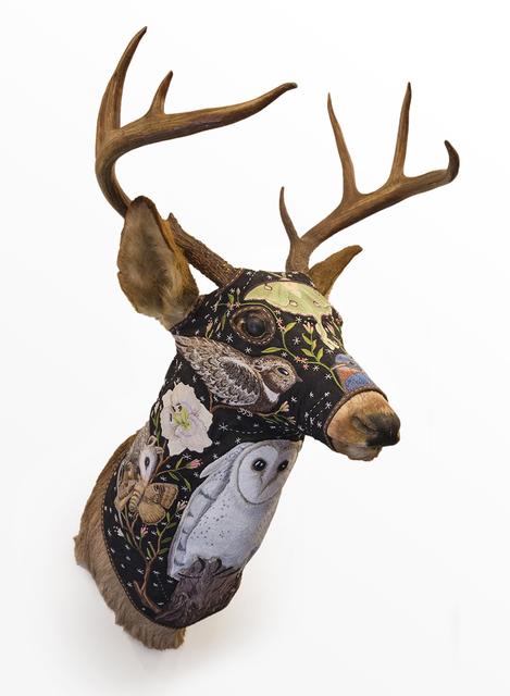 , 'Deer Head - Buck,' 2014, Antieau Gallery