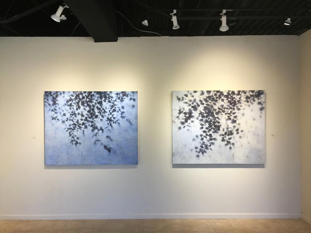 A Corner of Nature installation view: David Kidd