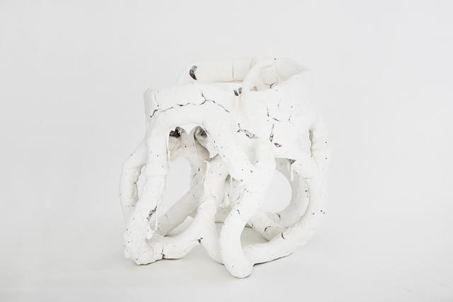 , 'White Species n1559,' 2016, Side Gallery
