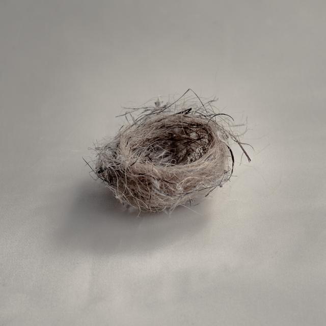 , 'Untitled Nest III,' , photo-eye Gallery