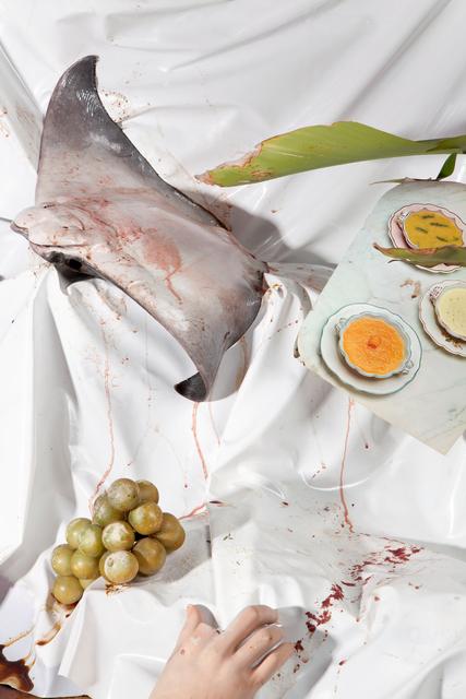, 'Still Life With RayFish,' 2019, ABXY