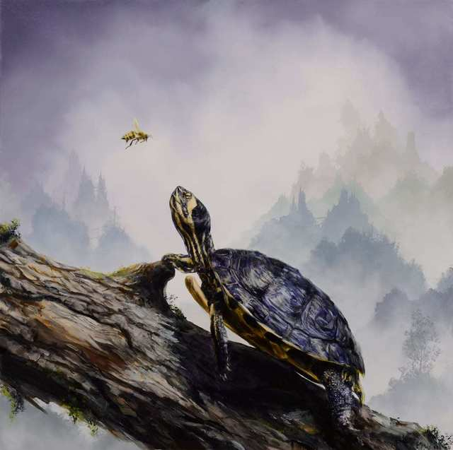 Brian Mashburn, 'Box Turtle and Honeybee', 2021, Painting, Oil on panel, Haven Gallery