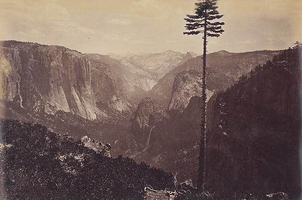 , 'Best General View, Yosemite,' ca. 1867, Scott Nichols Gallery