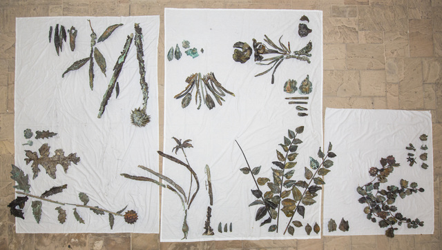 , 'Study for a Hanging Garden,' 2013-2014, Gwangju Biennale