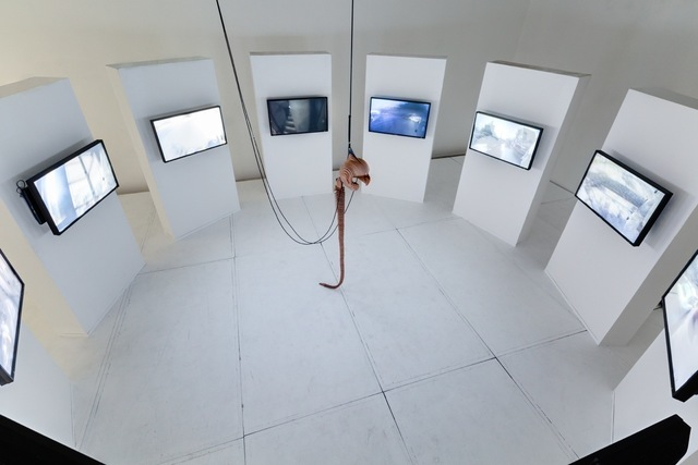 """, '""""C'etait un Rendez-Vous"""",' 2013, Carwan Gallery"""