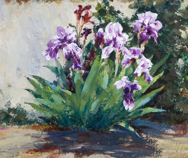, 'Iris,' , Dowling Walsh