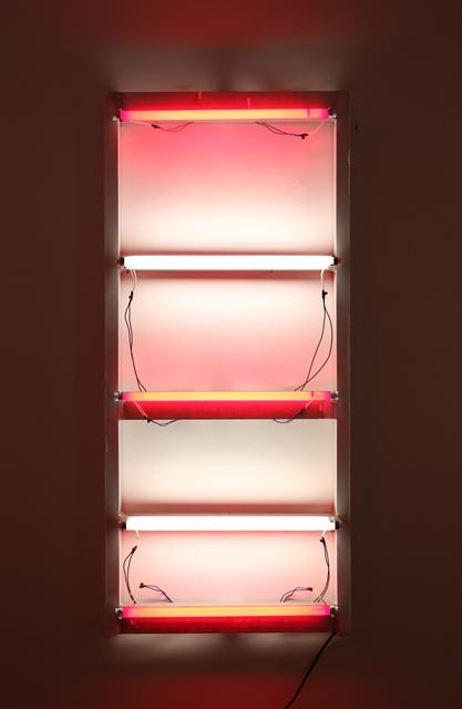 , 'Domestic viability,' 2010, LURIXS: Arte Contemporânea