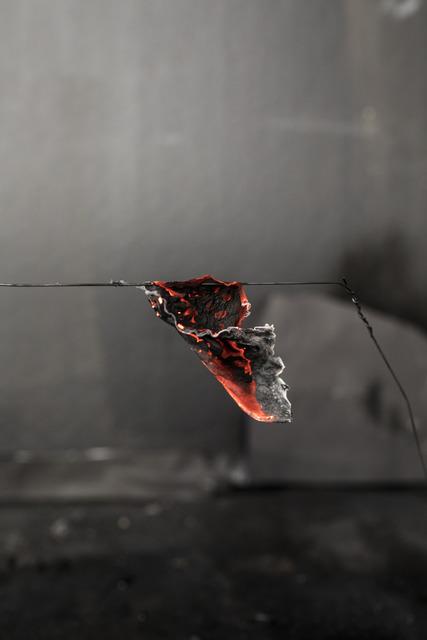 , 'Untitled,' 2018, Nicola von Senger