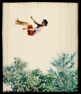 Elijah Gowin, 'Falling in Trees 1', 2006, Photography, Pigment inkjet print, Robert Mann Gallery