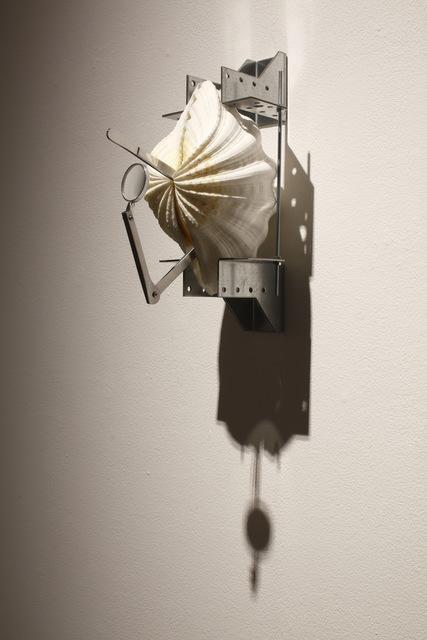 , 'Pearl Hunting (Imperial Venus) ,' 2016, Taro Nasu