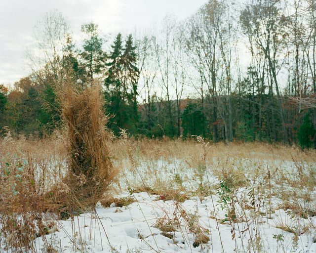 , 'Ghillie Suit (Weeds),' 2013, FRED.GIAMPIETRO Gallery