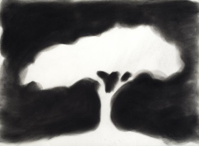 David Nash, 'Silhouette Tree', 2018, Galerie Lelong & Co.