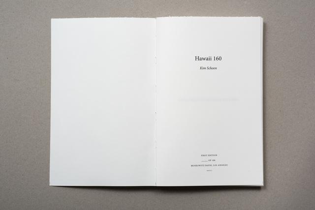 , 'Hawaii (160),' 2017, Moskowitz Bayse