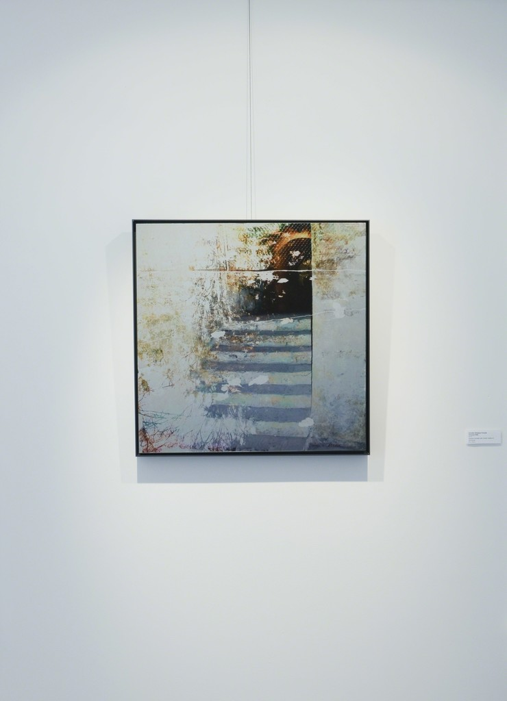 """Dorothy Simpson Krause, """"Sinuous Rills,"""" 2010, pigment transfer with mixed media on aluminum, 24 x 24 in.  Installation view at 571 Projects, Stowe, VT"""