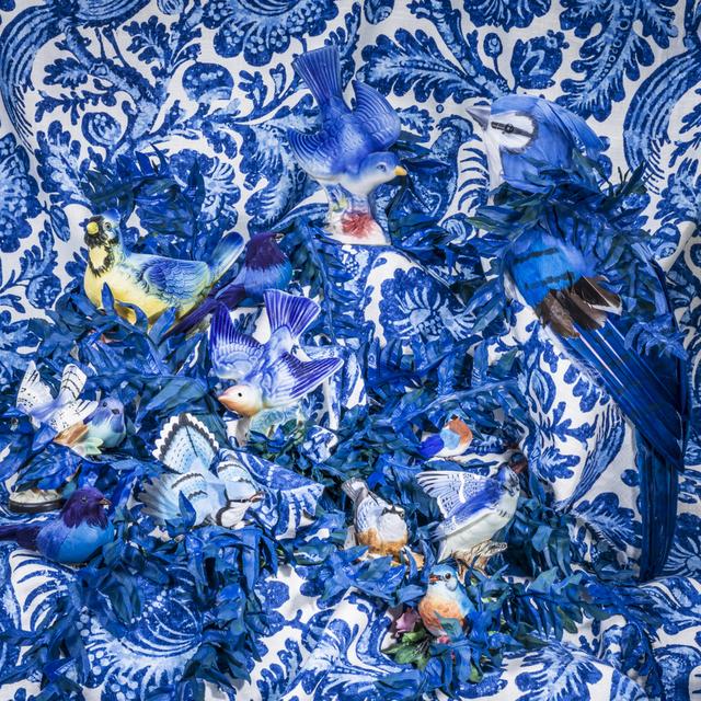 Patty Carroll, 'Blue Blue Birds', Weston Gallery