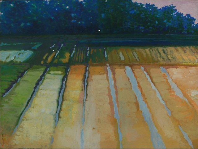 , 'Ridge-Bordered Plots,' 2009, Powen Gallery