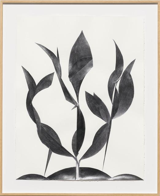 , 'Folie,' 2018, Galerie Lisa Kandlhofer