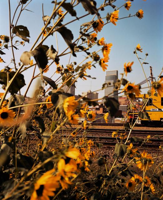 , 'Omaha, NE (Downtown Through Sunflowers),' 2005-2018, Huxley-Parlour