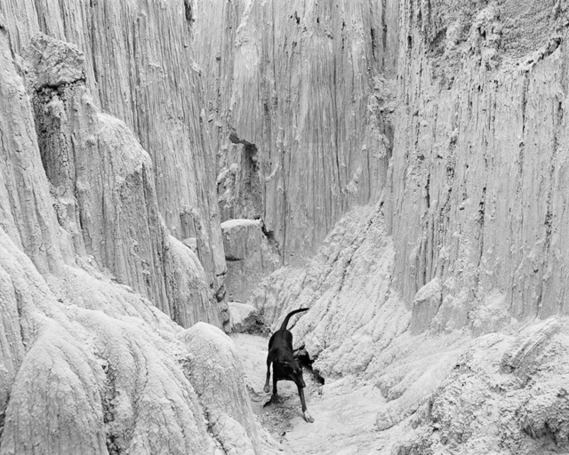 , 'Rufus at Cathedral Gorge,' 1982, Jenkins Johnson Gallery