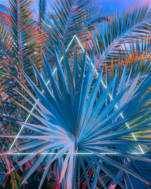, 'Equilaterally Tropical,' 2020, ArtStar