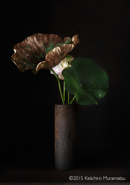 , 'A Stage Lotus 5-2,' 2015, Galerie Marie-Robin